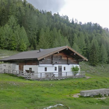 Guided walk 'alp hike' | PillerseeTal