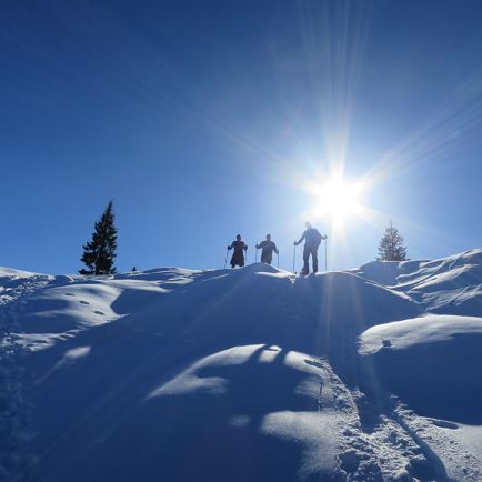 CANCELLED: Guided snowshoe hiking