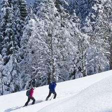 Europäische Winterwandertage: Gruttenweg Nr. 4