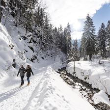 European Winter Walking Days: Guided walk at the bottom of the Wilde Kaiser