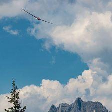 airdrenalin Alpinflugtage 2020