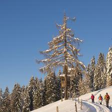 Winterwanderung - Im Antlitz des Niederkaisers