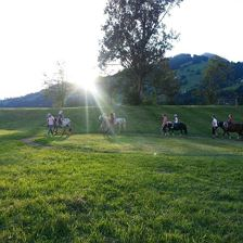 Pony rides for the children in Brixen