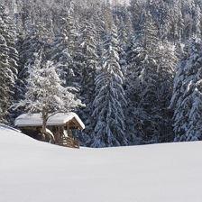 Prunkvolle Winterlandschaft - Winterwanderung durch das Bichlach