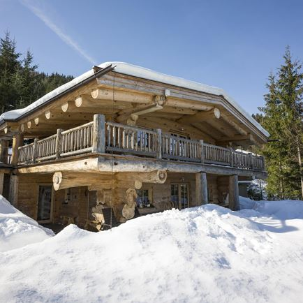 Chalet-Apartment Waldruhe