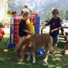 Ponies-Kinderplatz2
