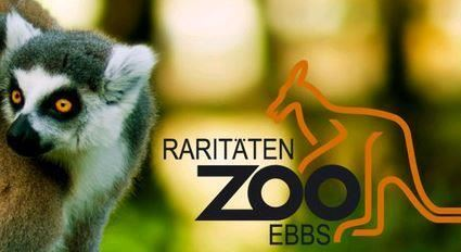 Zoo of rarities Ebbs