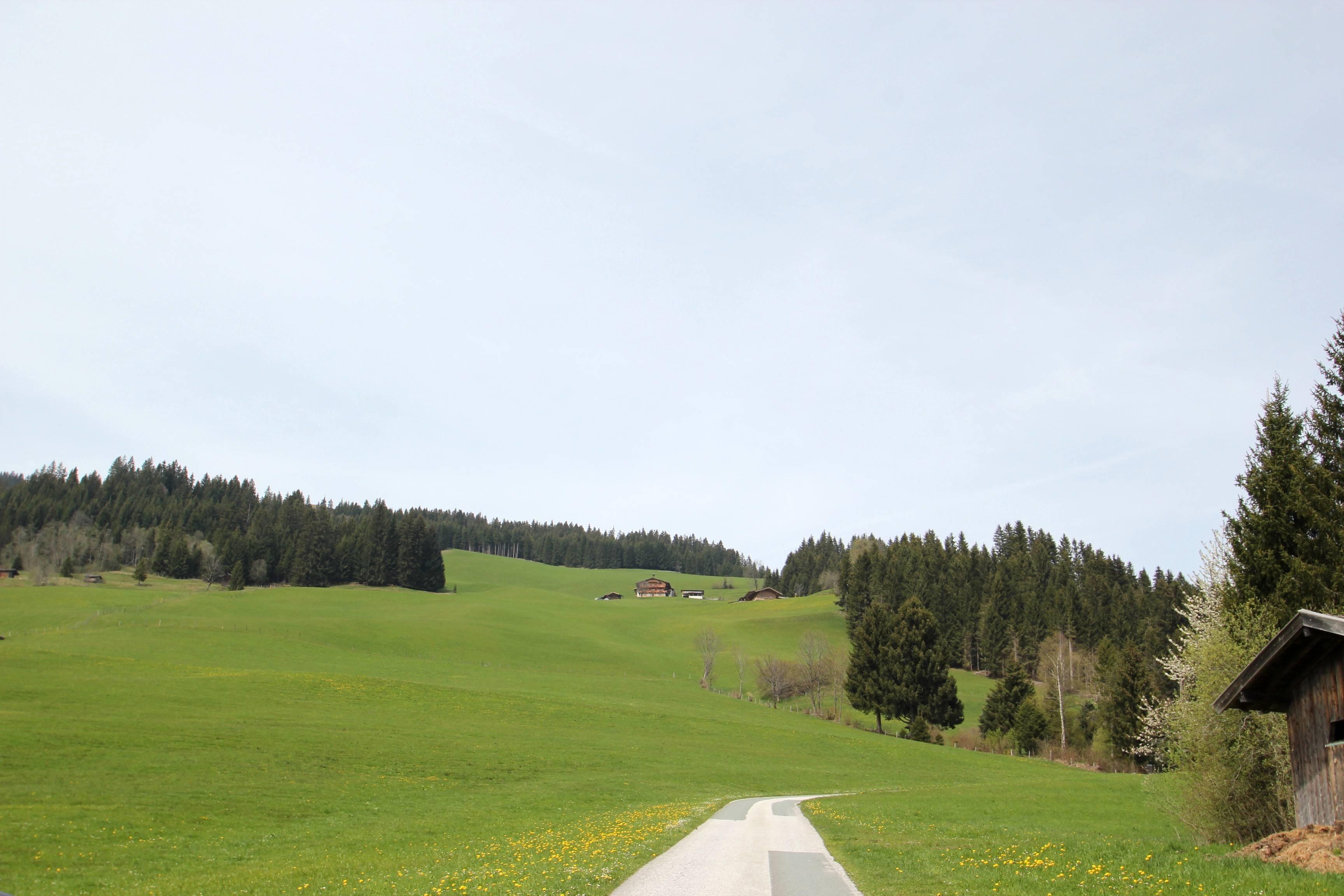 Flecklhof - Fuchs Johanna und Josef - Hopfgarten