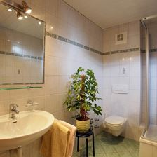 Appartement, douche, WC, balkon