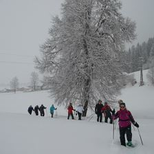 Snow Shoe Tour - Brixner Gangl